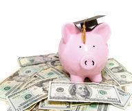 piggy-bank-graduation-cap-24650626